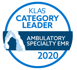 KLAS-Category-Leader-2020